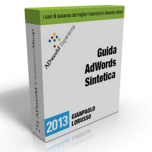 box Guida AdWords Sintetica